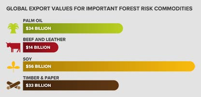 Horizontal bar chart showing percentage of forest 500 companies with commodity-specific policies.