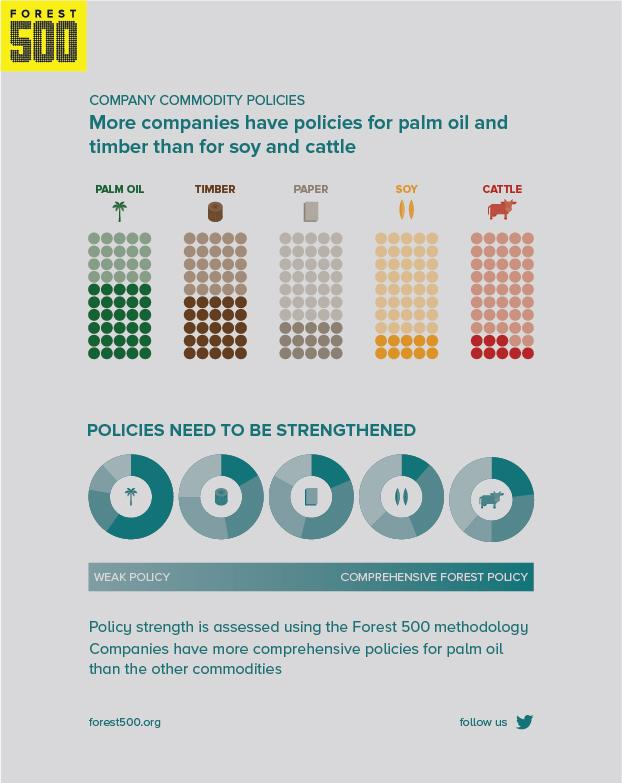 Graphs show percentage of companies with policies for different commodities