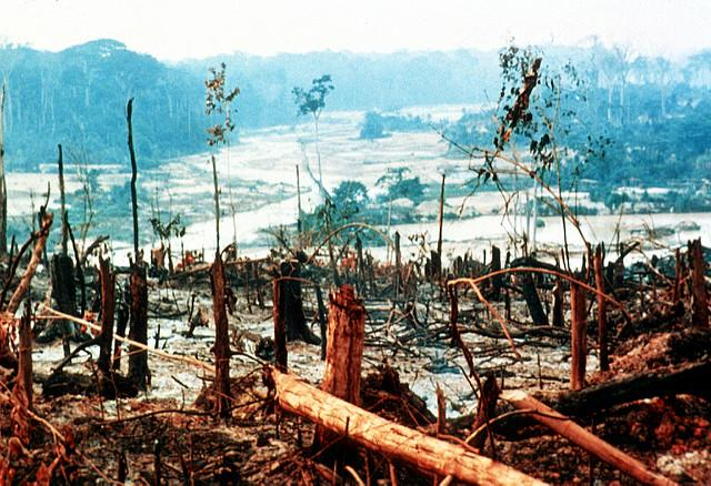 image shows deforestation in the Amazon