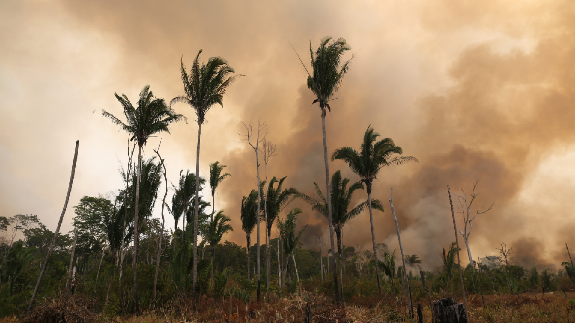 Image shows burning forest in Brazil